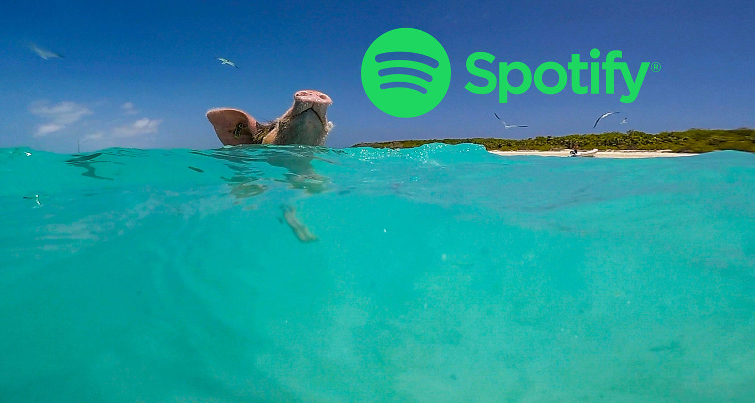 What Do You Listen To In The Islands? Follow Us On Spotify